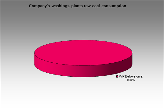 MMK(Belon) - Company's washings plants raw coal consumption